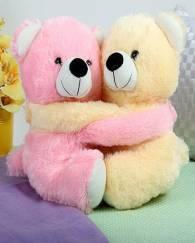 Hugging Teddy Duo